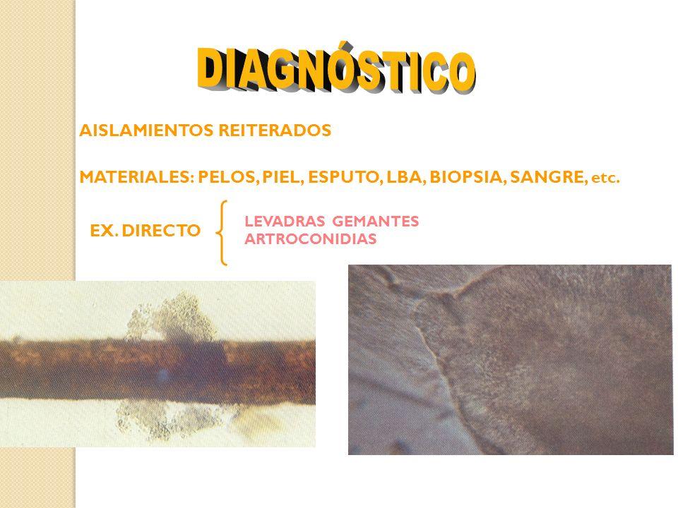 DIAGNÓSTICO AISLAMIENTOS REITERADOS