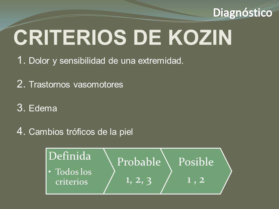 CRITERIOS DE KOZIN Diagnóstico Definida Probable 1, 2, 3 Posible 1 , 2