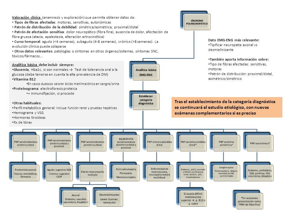 SÍNDROME POLINEUROPÁTICO Establecer categoría diagnóstica
