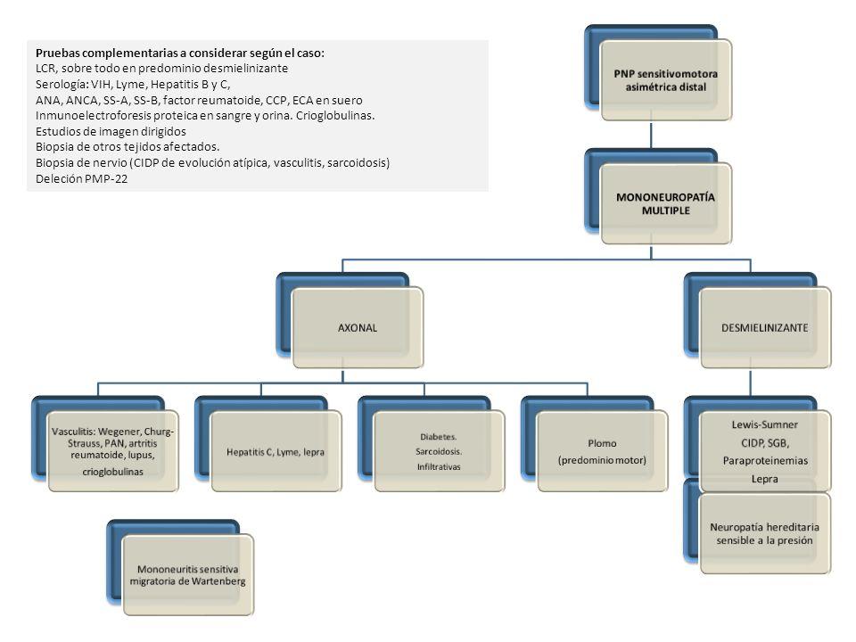 PNP sensitivomotora asimétrica distal MONONEUROPATÍA MULTIPLE