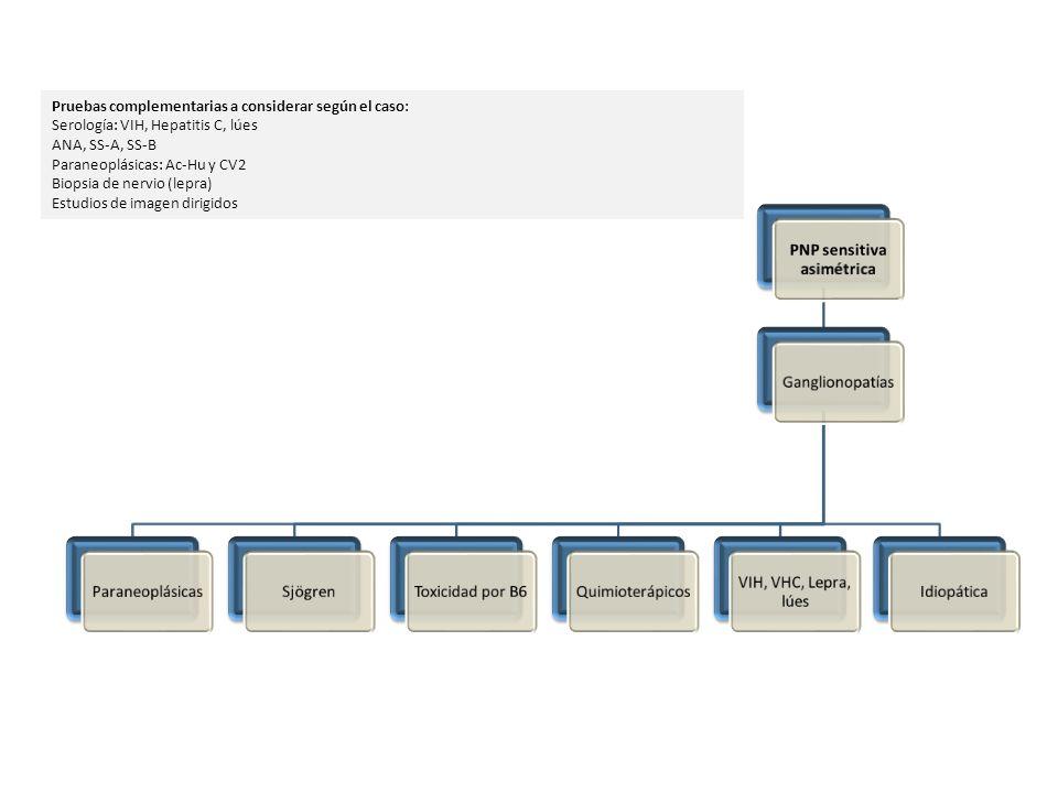 PNP sensitiva asimétrica