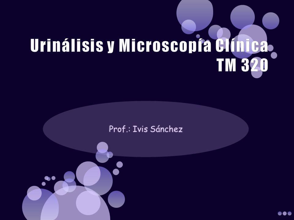 Urinálisis y Microscopía Clínica TM 320