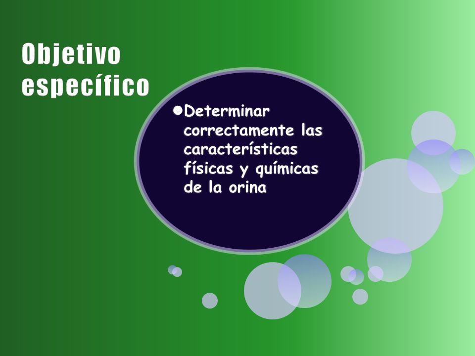 Objetivo específico Determinar correctamente las características físicas y químicas de la orina
