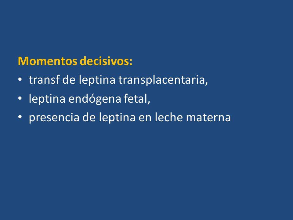 Momentos decisivos: transf de leptina transplacentaria, leptina endógena fetal, presencia de leptina en leche materna.