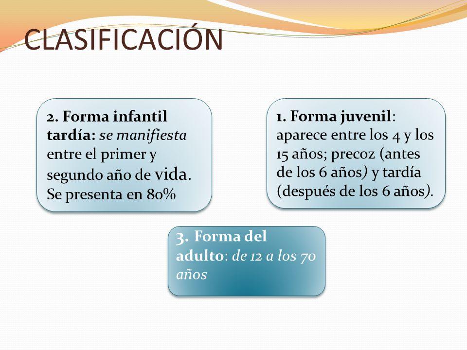 CLASIFICACIÓN 3. Forma del adulto: de 12 a los 70 años