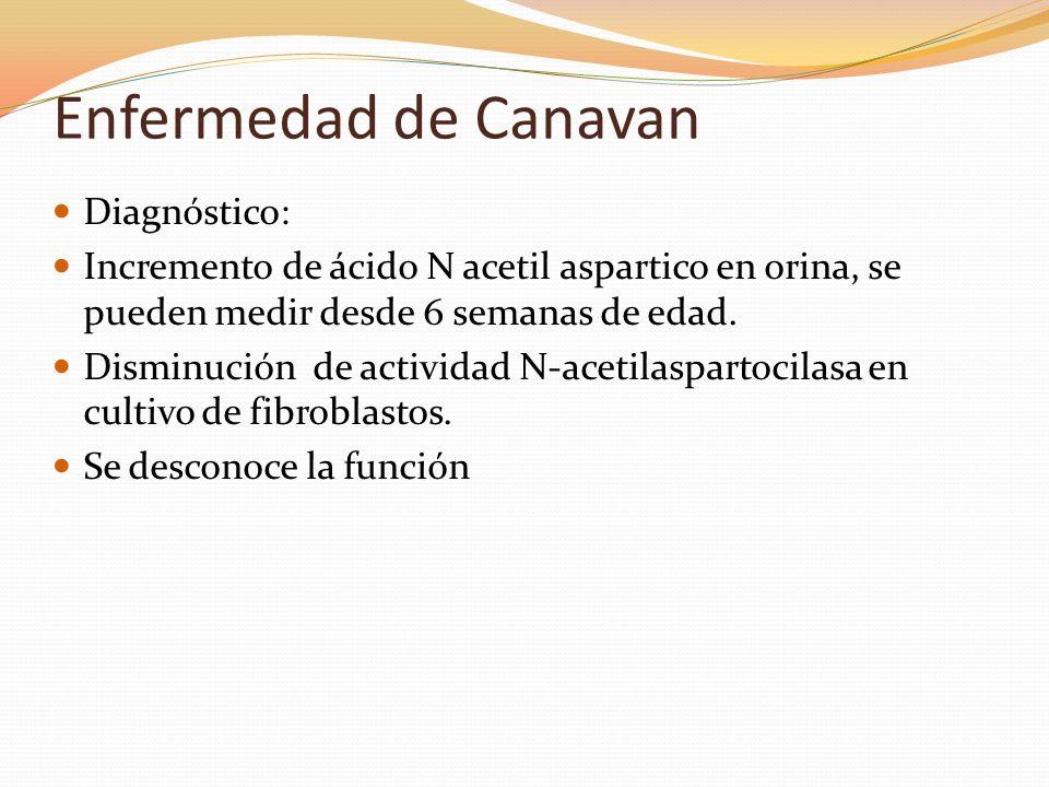 Enfermedad de Canavan Diagnóstico: