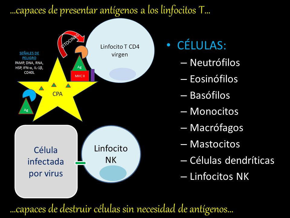 Célula infectada por virus