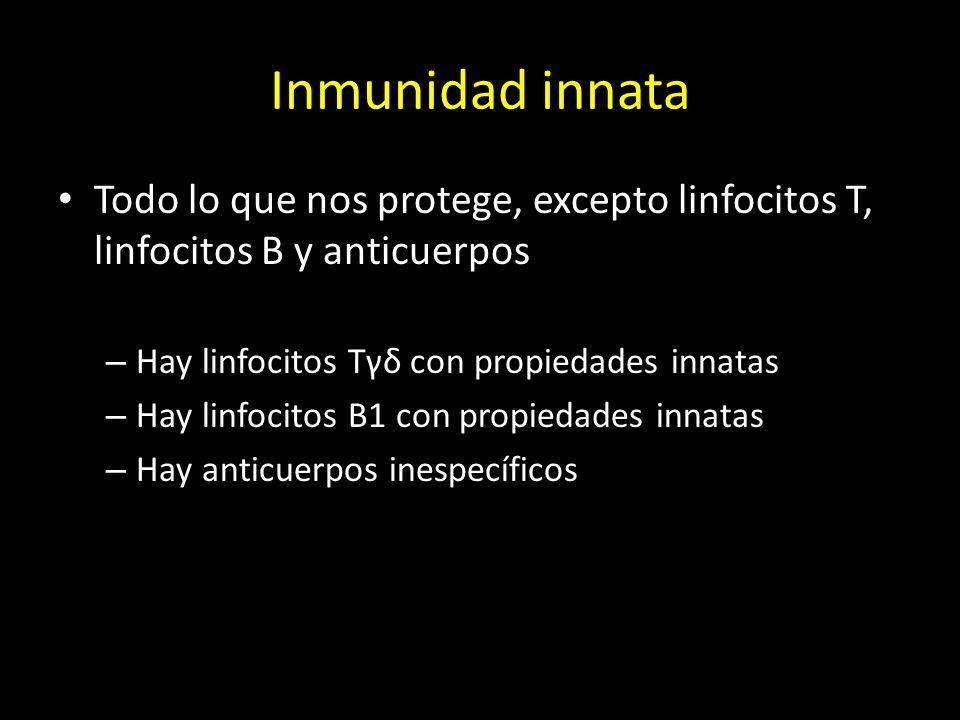 Inmunidad innata Todo lo que nos protege, excepto linfocitos T, linfocitos B y anticuerpos. Hay linfocitos Tγδ con propiedades innatas.