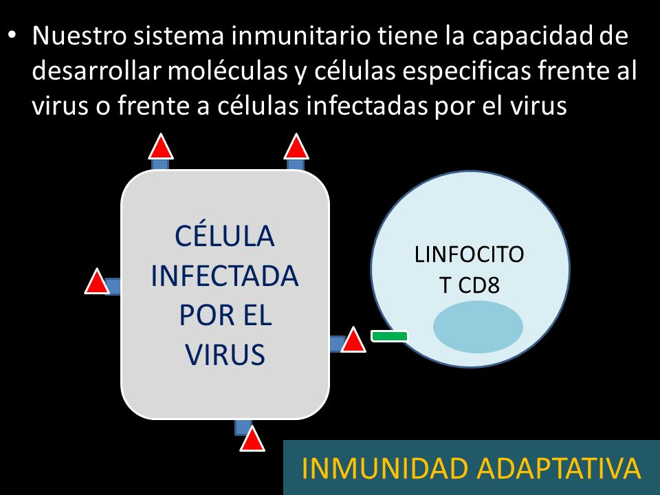 CÉLULA INFECTADA POR EL VIRUS