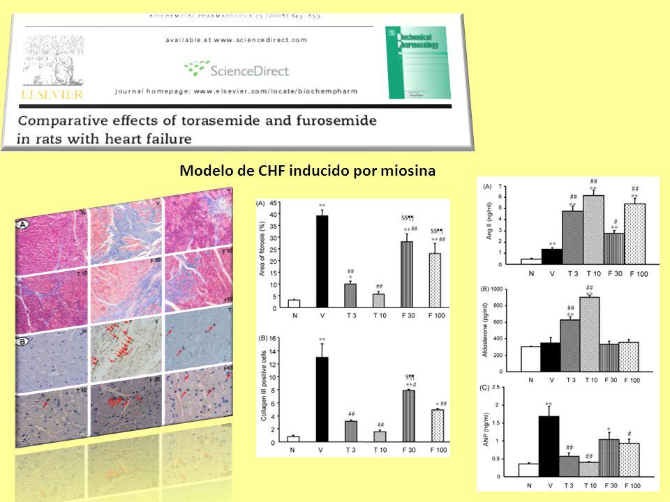 Modelo de CHF inducido por miosina