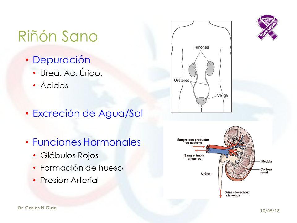 Riñón Sano Depuración Excreción de Agua/Sal Funciones Hormonales