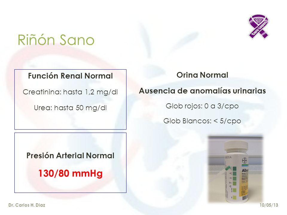 Ausencia de anomalías urinarias Presión Arterial Normal