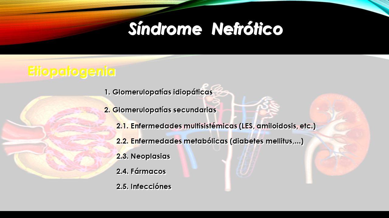 Síndrome Nefrótico Etiopatogenia 1. Glomerulopatías idiopáticas