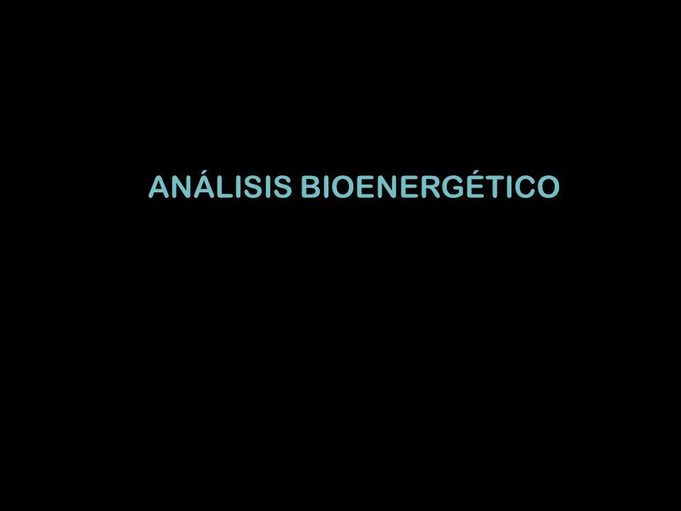 ANÁLISIS BIOENERGÉTICO
