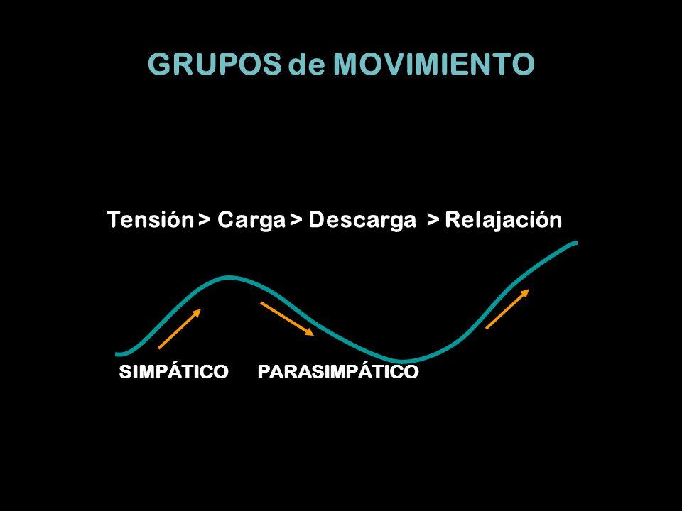 GRUPOS de MOVIMIENTO Tensión > Carga > Descarga > Relajación