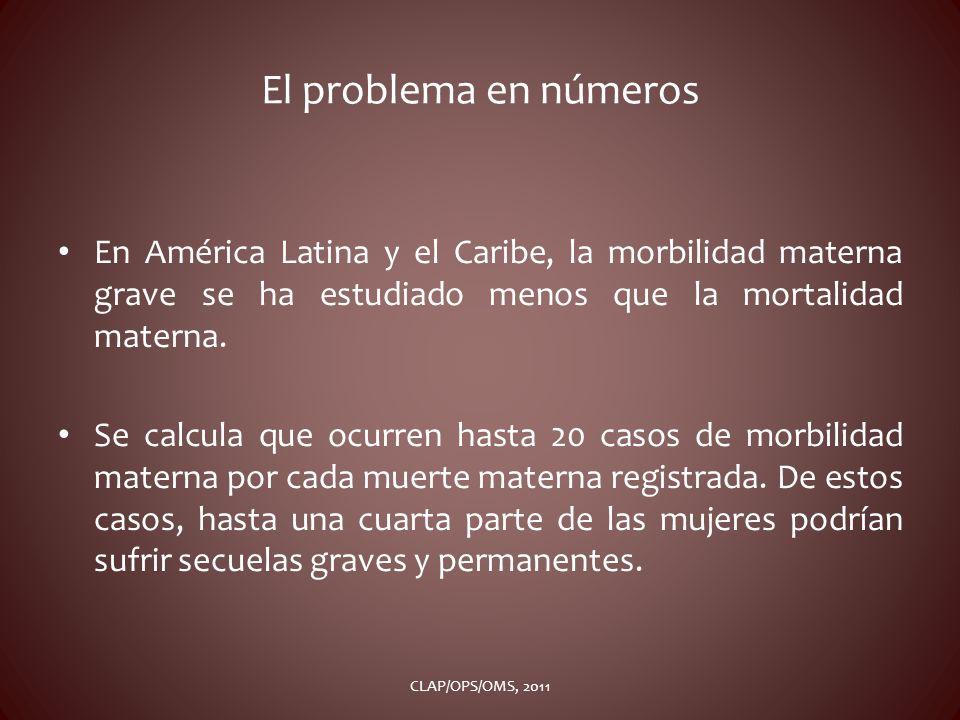 El problema en números En América Latina y el Caribe, la morbilidad materna grave se ha estudiado menos que la mortalidad materna.