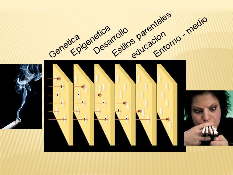 Estilos parentales Entorno - medio Epigenetica Desarrollo Genetica educacion