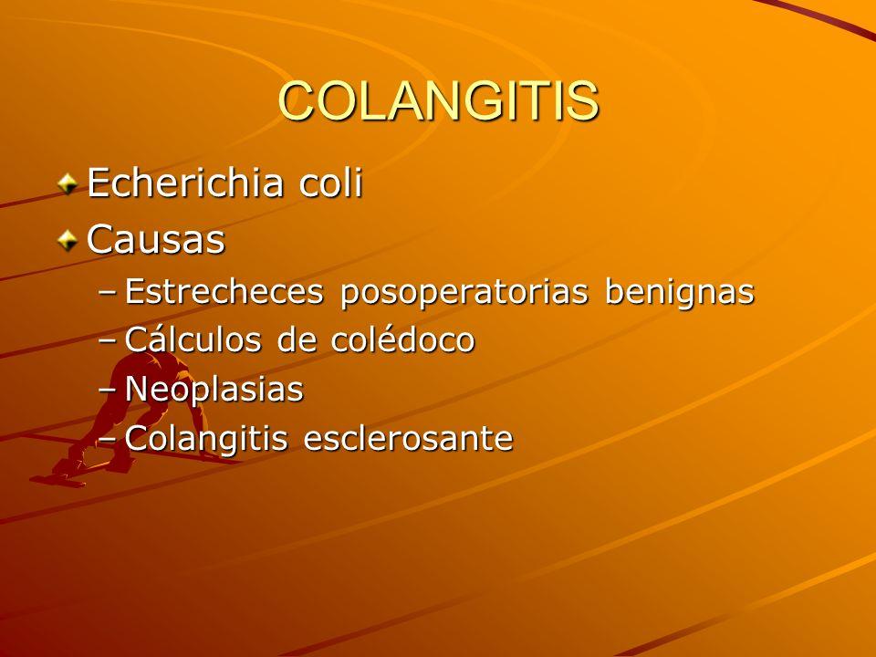 COLANGITIS Echerichia coli Causas Estrecheces posoperatorias benignas