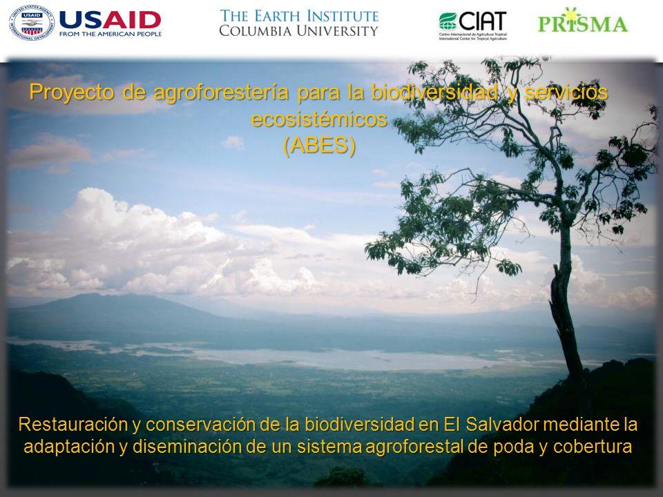 Proyecto de agroforestería para la biodiversidad y servicios ecosistémicos (ABES)