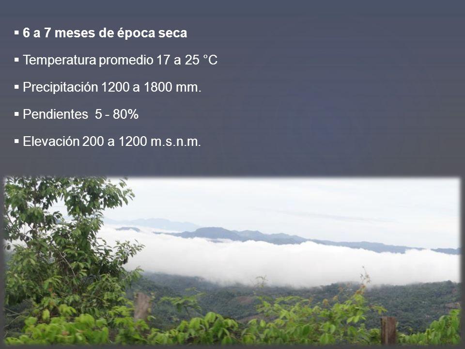 6 a 7 meses de época seca Temperatura promedio 17 a 25 °C. Precipitación 1200 a 1800 mm. Pendientes 5 - 80%
