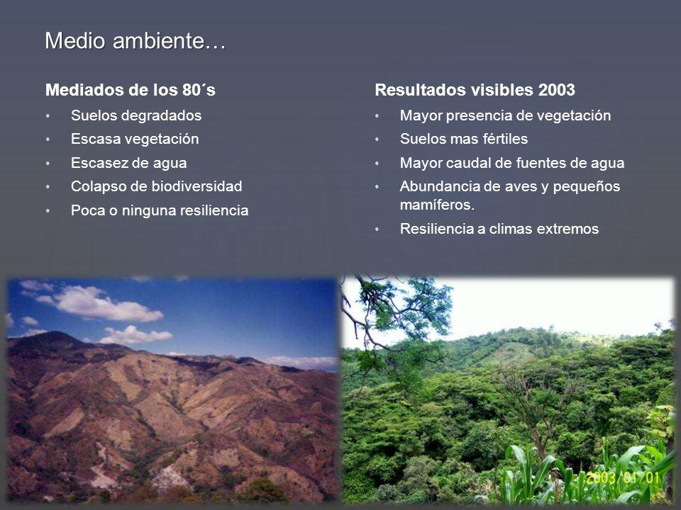 Medio ambiente… Mediados de los 80´s Resultados visibles 2003