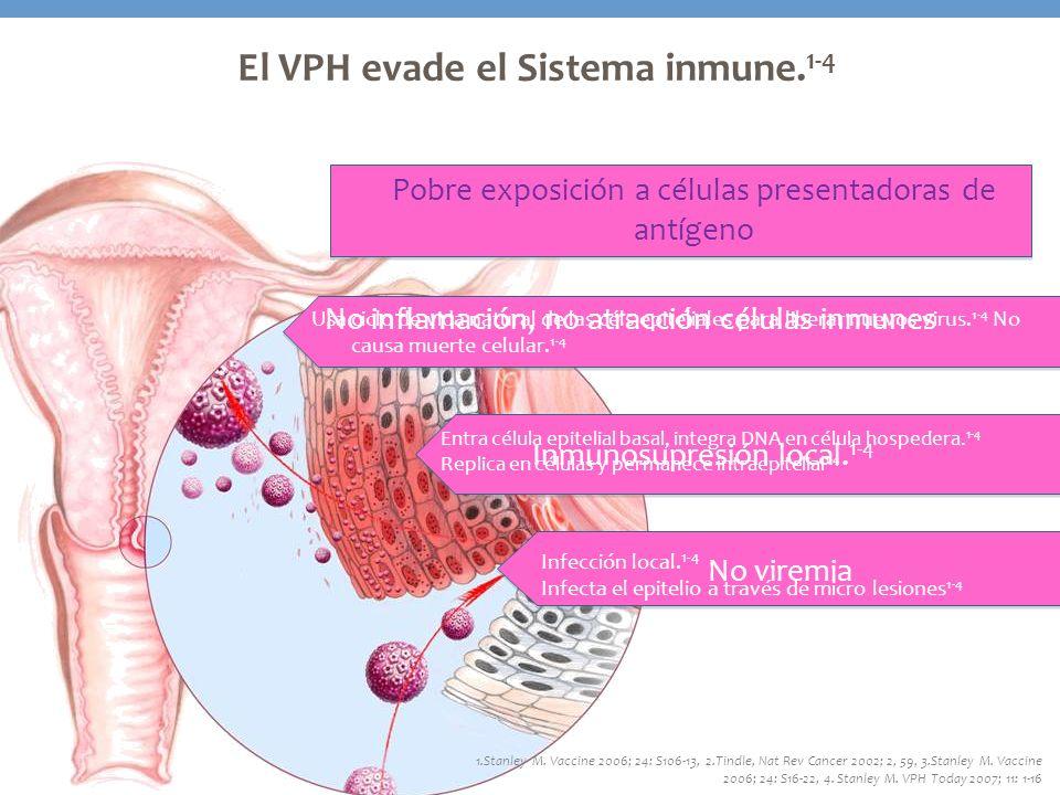 El VPH evade el Sistema inmune.1-4