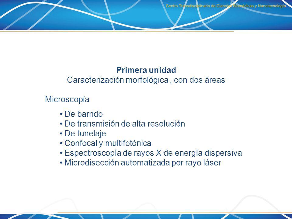 Caracterización morfológica , con dos áreas