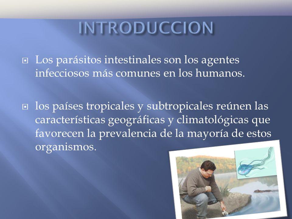 INTRODUCCION Los parásitos intestinales son los agentes infecciosos más comunes en los humanos.