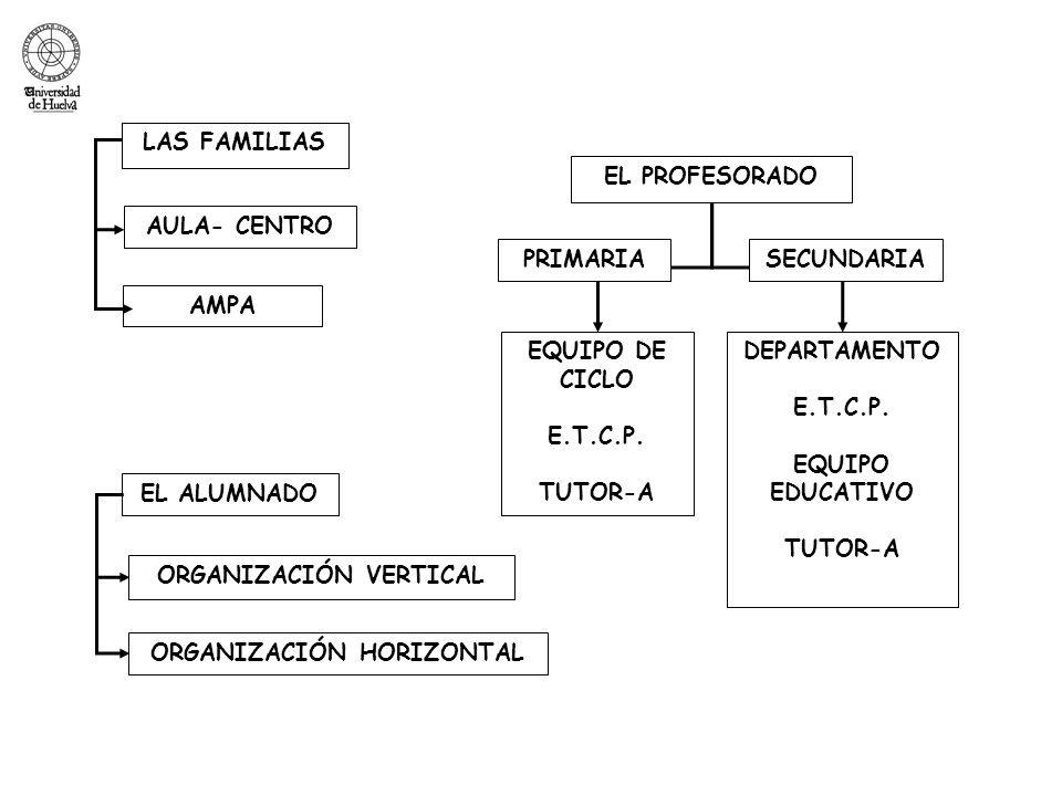 ORGANIZACIÓN VERTICAL ORGANIZACIÓN HORIZONTAL