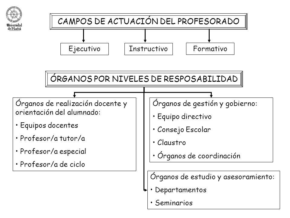 CAMPOS DE ACTUACIÓN DEL PROFESORADO