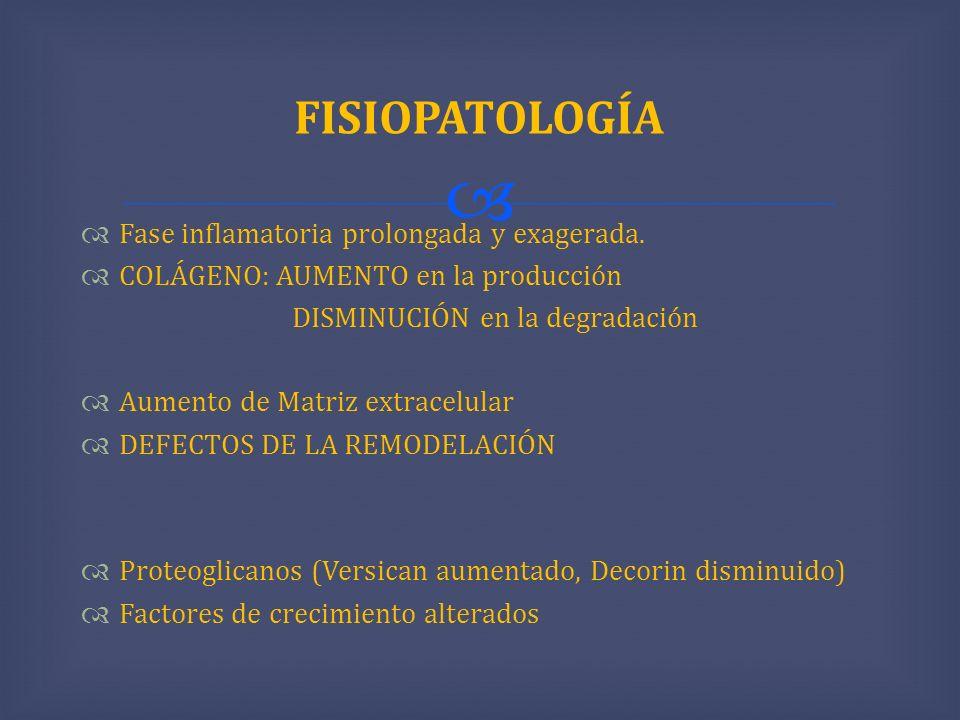 FISIOPATOLOGÍA Fase inflamatoria prolongada y exagerada.