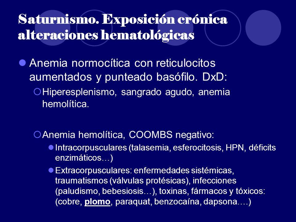 Saturnismo. Exposición crónica alteraciones hematológicas