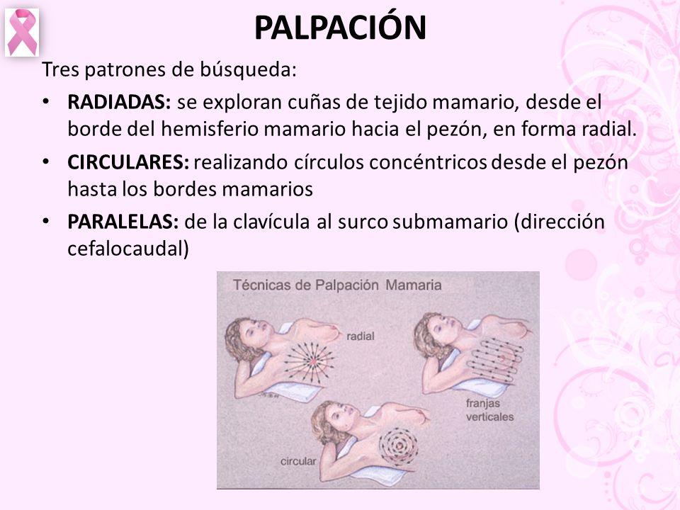 PALPACIÓN Tres patrones de búsqueda: