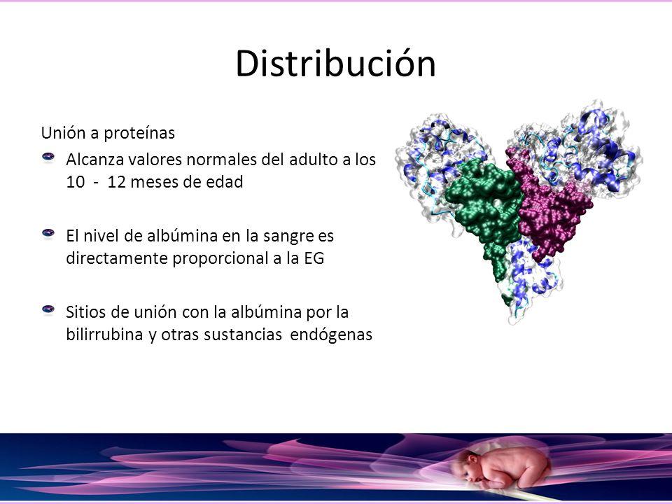 Distribución Unión a proteínas