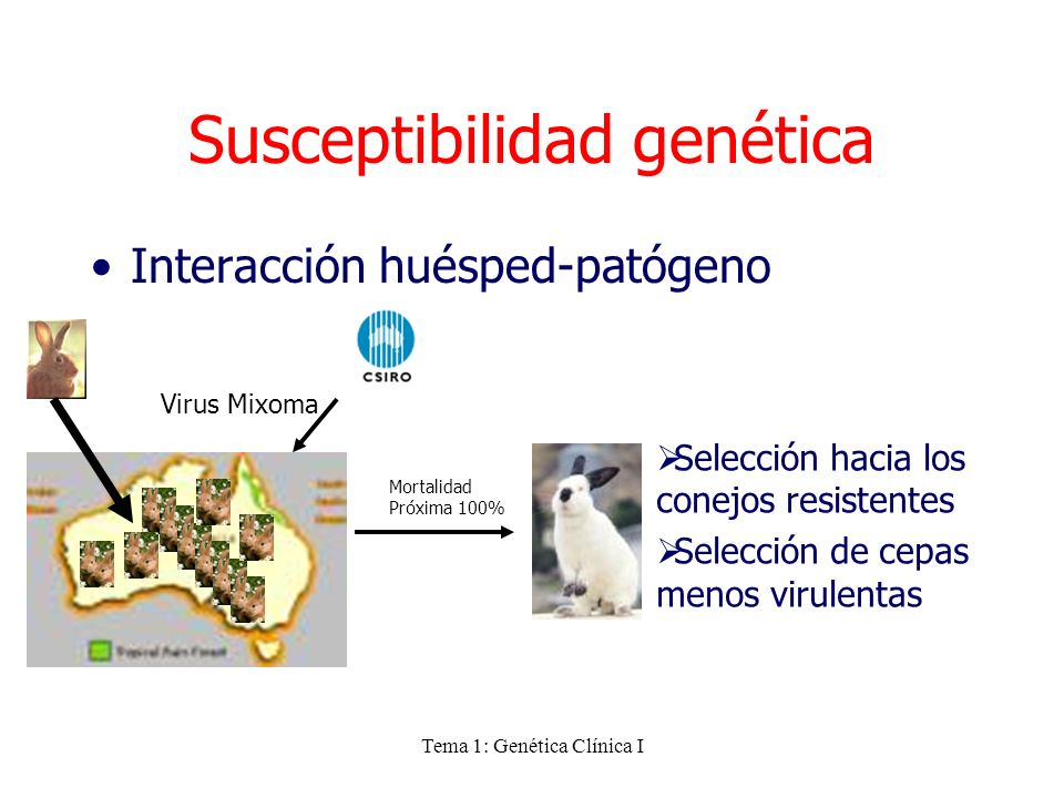 Susceptibilidad genética