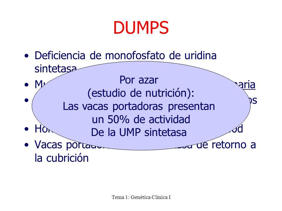 DUMPS Deficiencia de monofosfato de uridina sintetasa