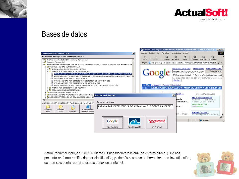 www.actualsoft.com.ar Bases de datos.