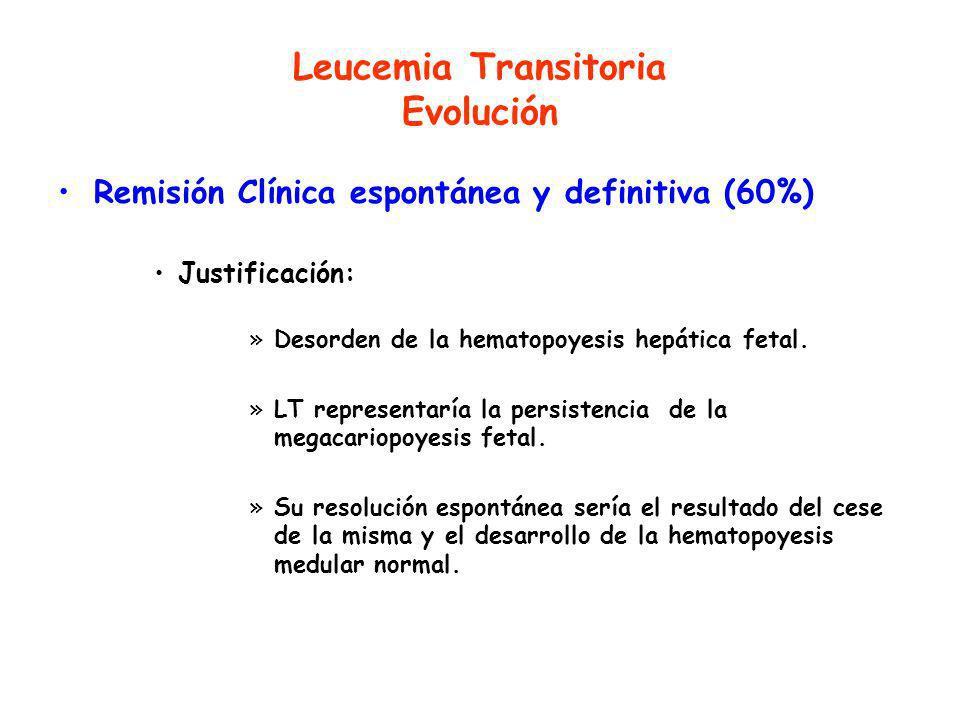 Leucemia Transitoria Evolución