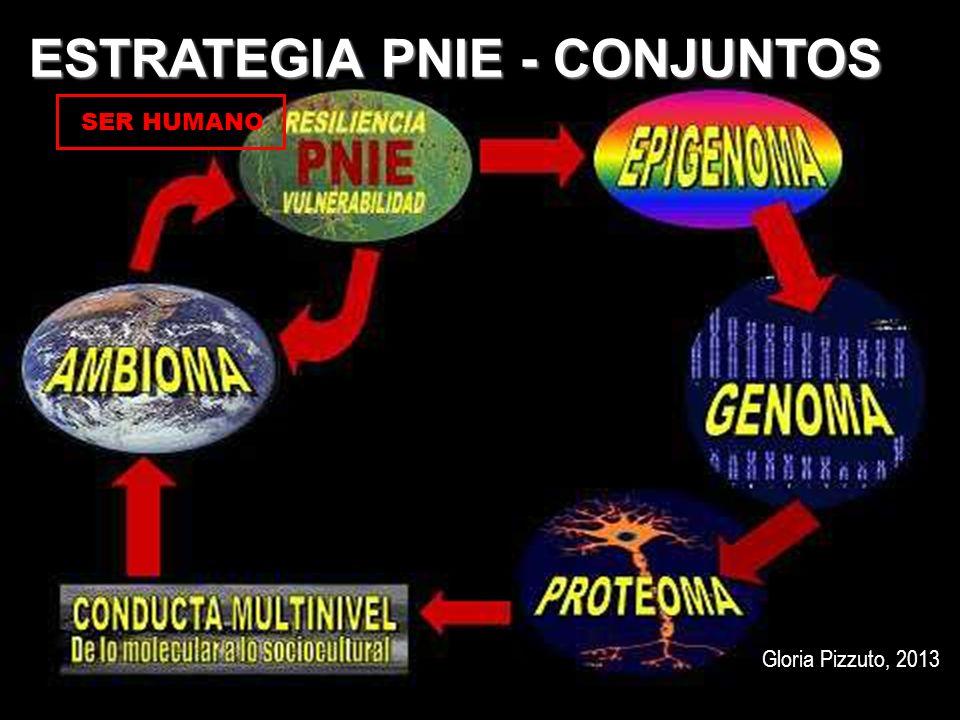 ESTRATEGIA PNIE - CONJUNTOS