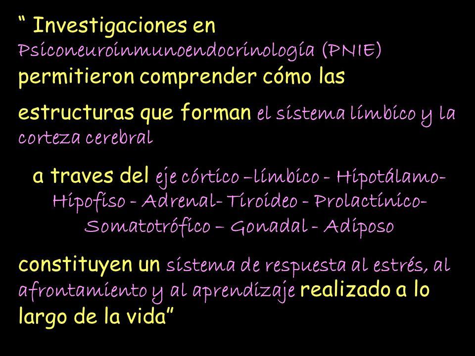 Investigaciones en Psiconeuroinmunoendocrinología (PNIE) permitieron comprender cómo las