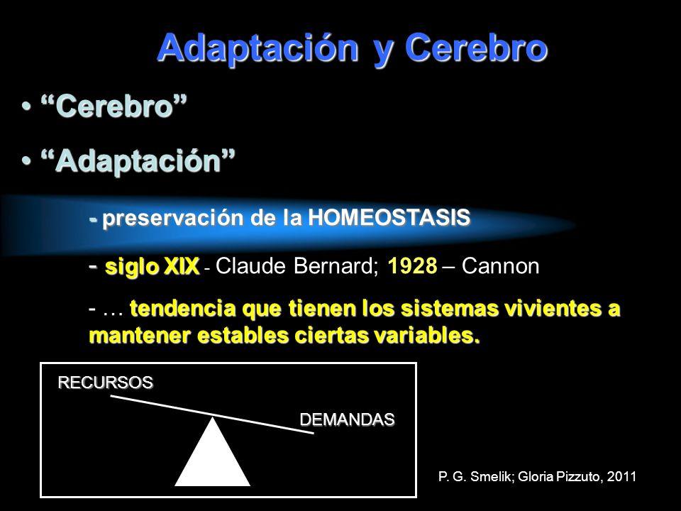 Adaptación y Cerebro Cerebro Adaptación