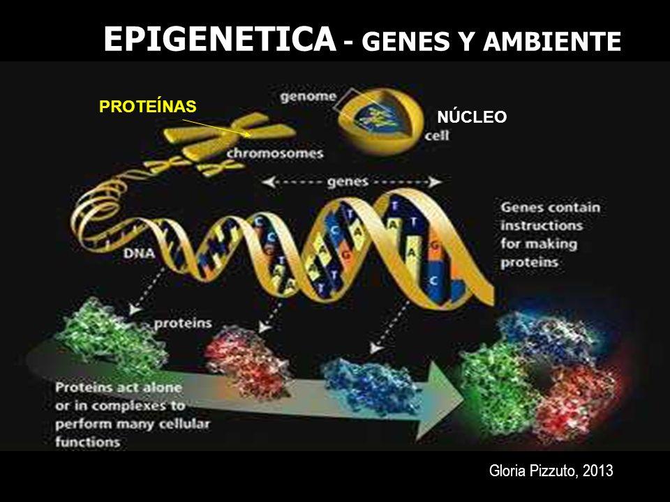 EPIGENETICA - GENES Y AMBIENTE