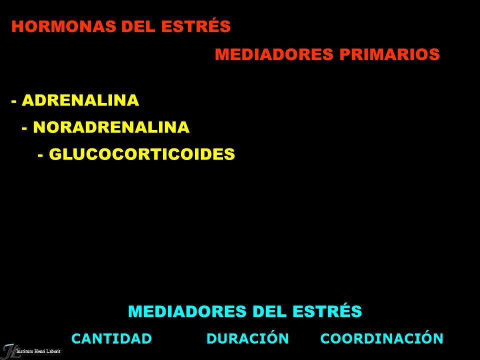 HORMONAS DEL ESTRÉS MEDIADORES PRIMARIOS - ADRENALINA - NORADRENALINA