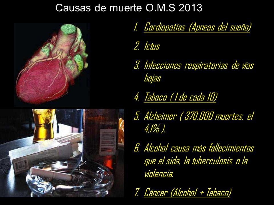 Causas de muerte O.M.S 2013 Cardiopatías (Apneas del sueño) Ictus. Infecciones respiratorias de vías bajas.
