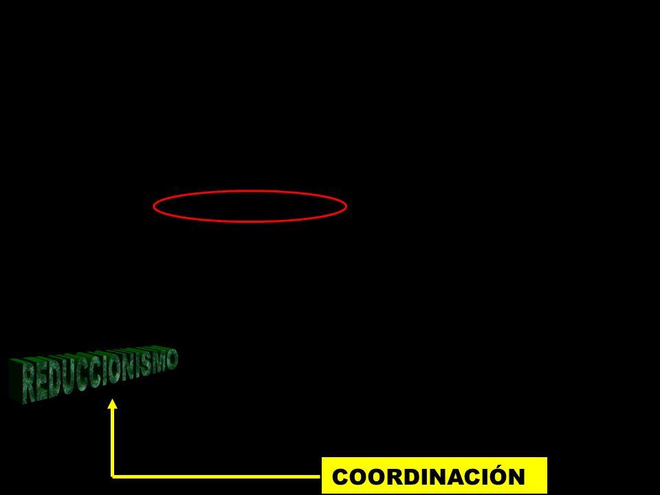 REDUCCIONISMO COORDINACIÓN