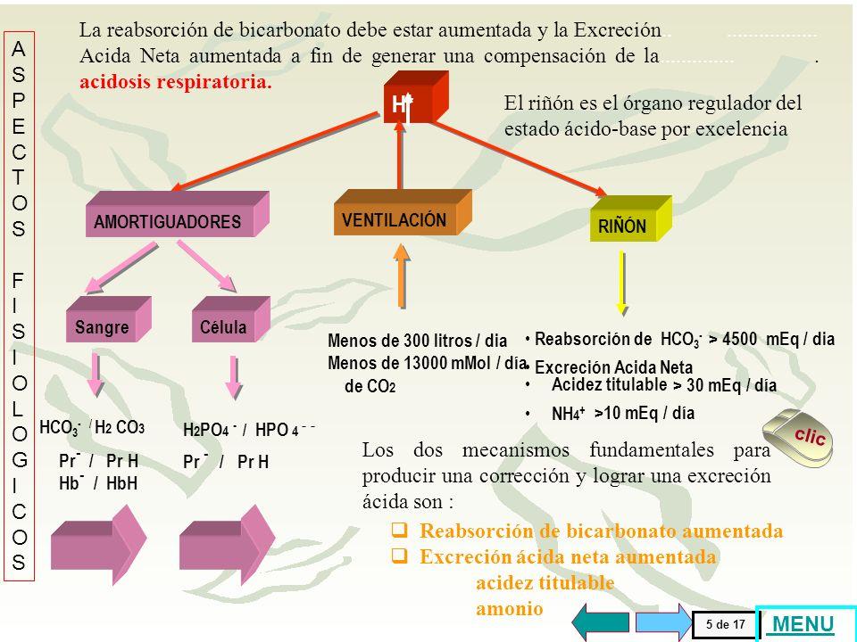 La reabsorción de bicarbonato debe estar aumentada y la Excreción