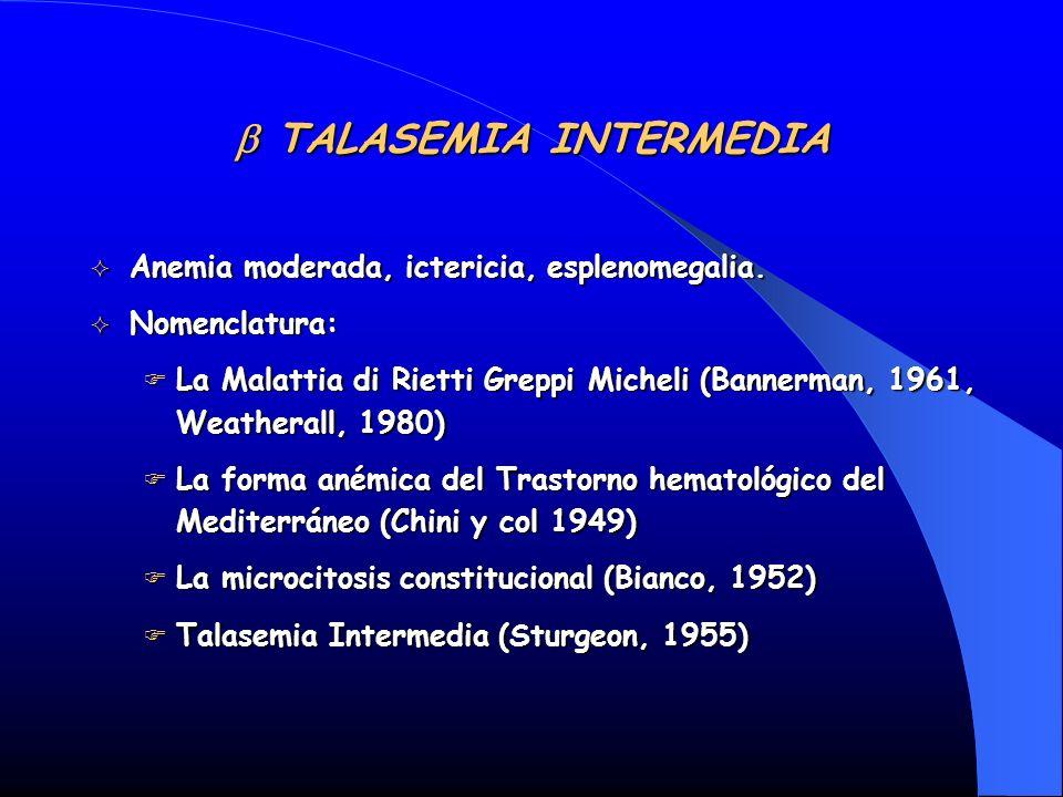 b TALASEMIA INTERMEDIA
