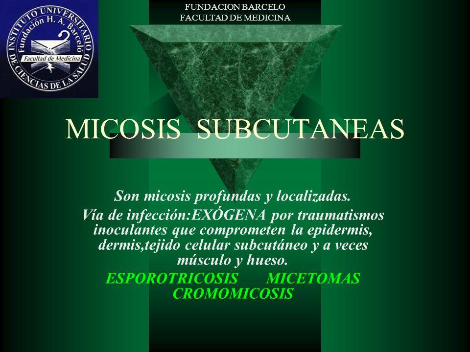 MICOSIS SUBCUTANEAS Son micosis profundas y localizadas.