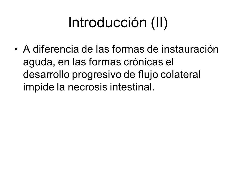Introducción (II)