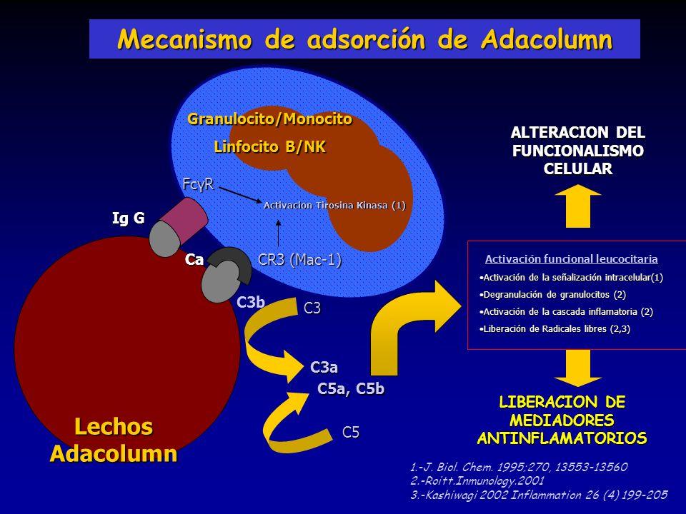 Mecanismo de adsorción de Adacolumn
